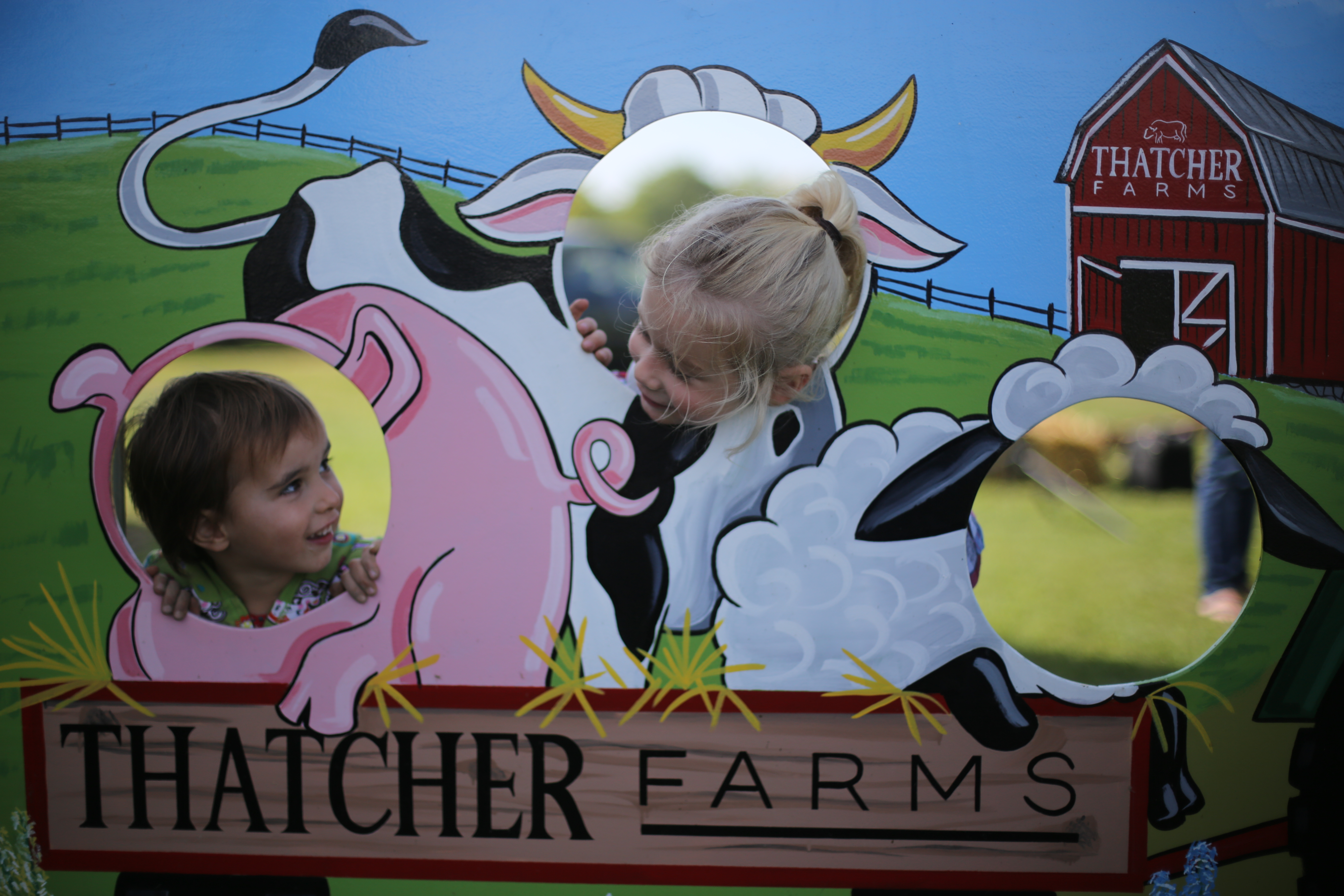 Full size lightbox of Thatcher Farms Butcher Shop, Bakery and Farm Market image 0